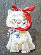 古い時代の猫のぬいぐるみカード 英国 EINCO FIFI