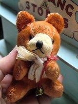 小さな熊さん ジャパンベア ベビーフェイス